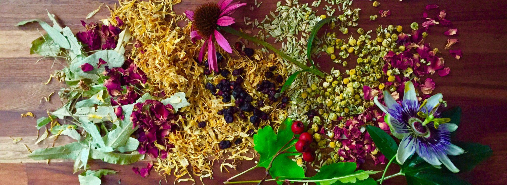 Billericay Herbal Medicine