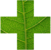 Billericay Herbal Medicine logo